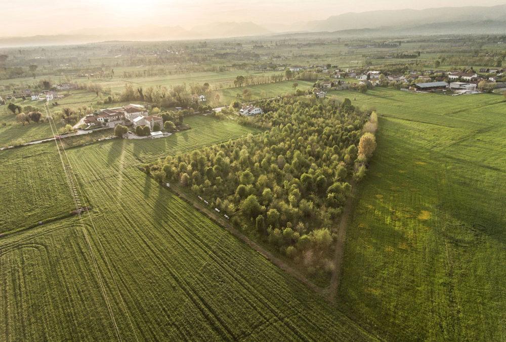 """La nuova sfida di Sgambaro: entro il 2030  la sua pasta sarà """"climate positive"""""""