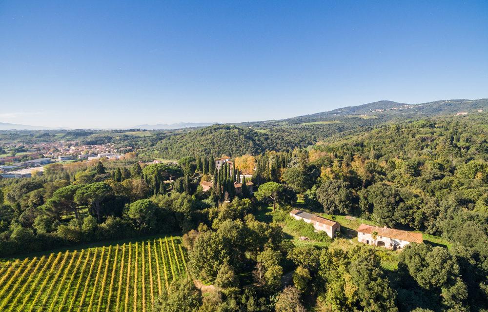 Villa Bibbiani – L'incontro delle due anime in Treggiaia IGT