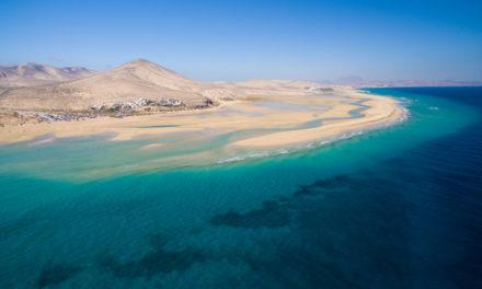 Isole Canarie custodi dell'ecosistema marino